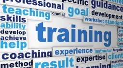 training123
